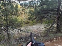 Коллективная охота на кабана и оленя. Сезон 2020, третий выход